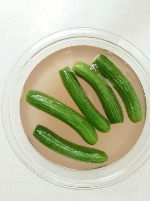 pickles - in brine